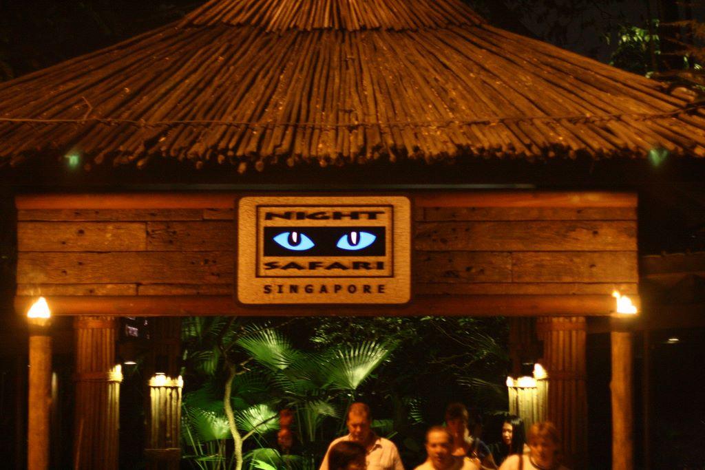 singapore night safari tour world tourism and travels. Black Bedroom Furniture Sets. Home Design Ideas