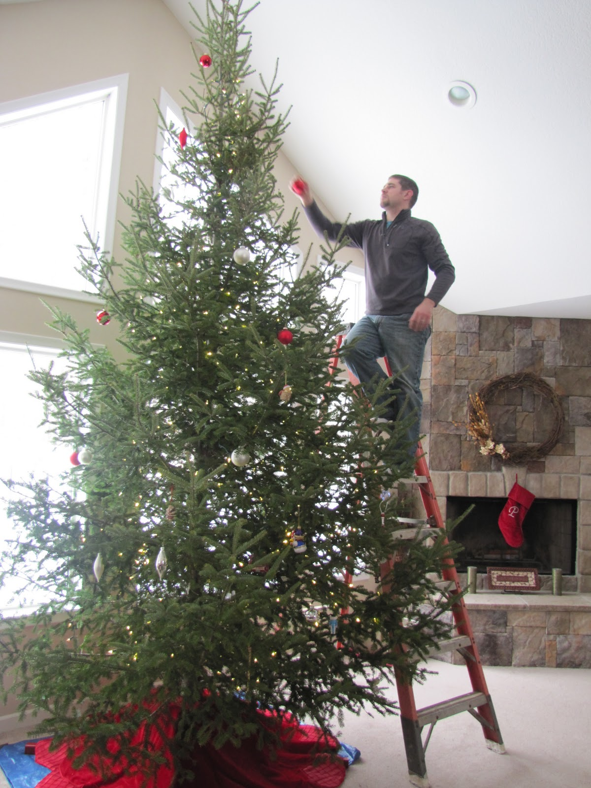 The Petersen Press: Home Sweet Minnesota: Oh Christmas Tree, Oh ...