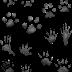 Animal Track - Animals Tracks