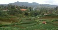 Deskripsi Blog Desa Cilembu
