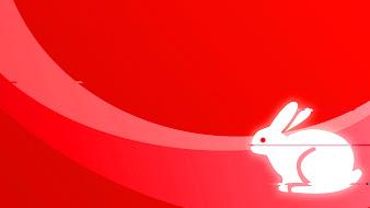 #10 Rabbit Wallpaper