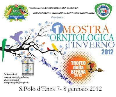"""@""""ITALIA""""2012""""@"""