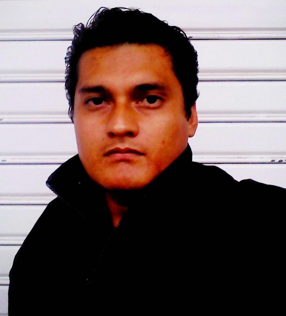 Blog de Compiladores, Pedro Villalta, Pavillalta