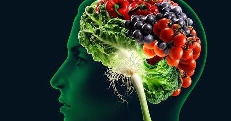 Alimentos y nutrientes para el cerebro
