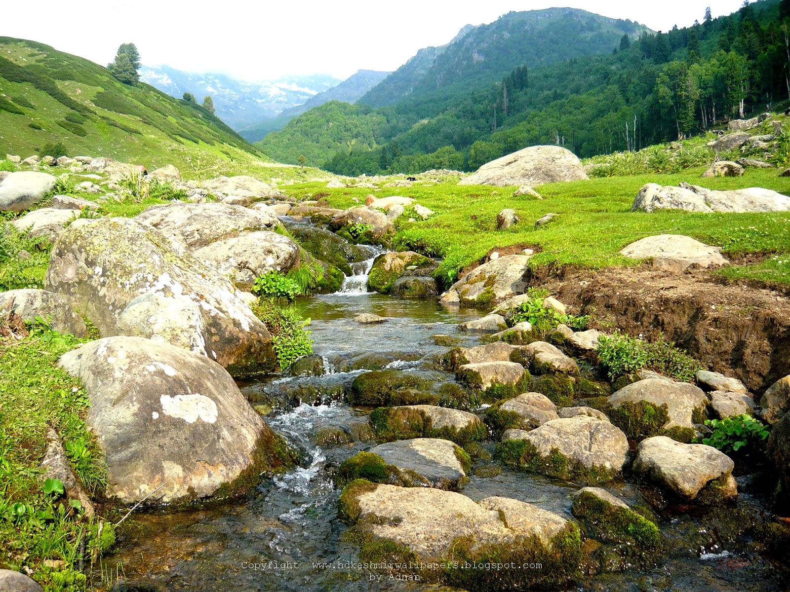 flowing streams in nagaberi kashmir   hd kashmir wallpapers