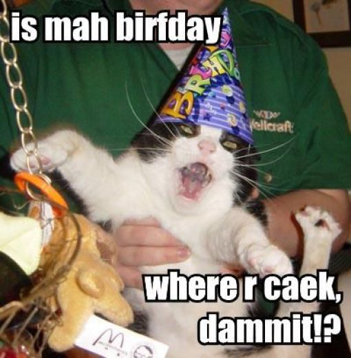 Cats Birthday Parties