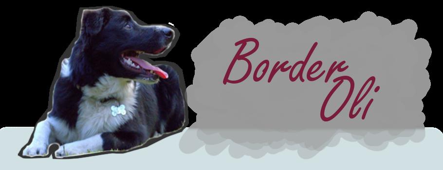 Border Oli