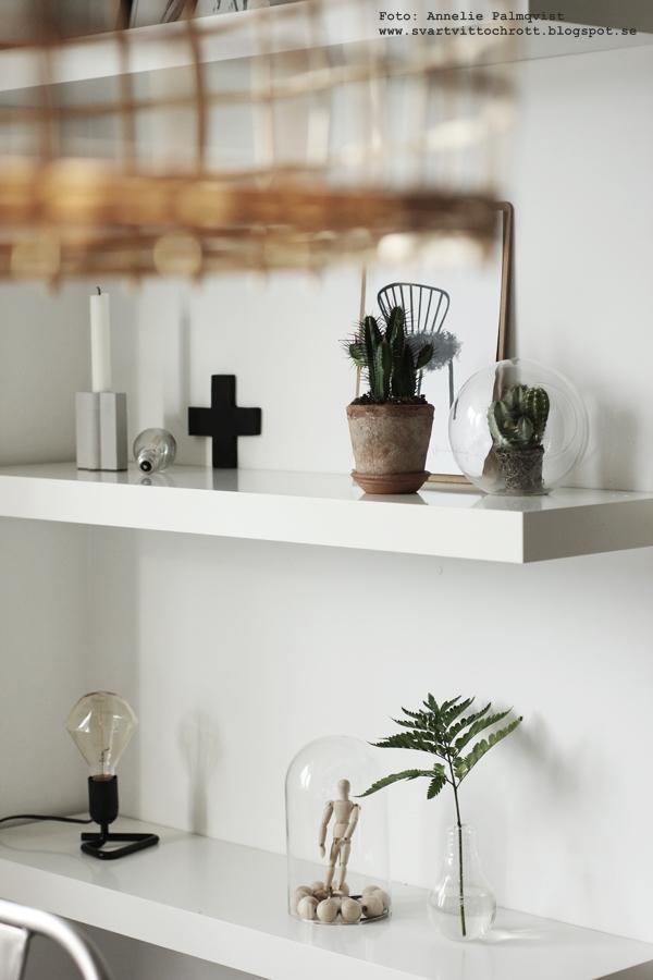 kaktusar,kaktus, trender, trend, trendigt i inredningen, mode, inredningstips, inredningen, webbutik, webbutiker, webshop, nettbutikk, nettbutikker, kors, hylla, hyllor, kök, köket, lampa, grön kvist, glaskupa, poster, posters, print, prints, tavla, tavlor, stol, svart och vitt, svartvit, svartvita, modelldocka, modelldockor, trärena detaljer, trädocka, trädockor,