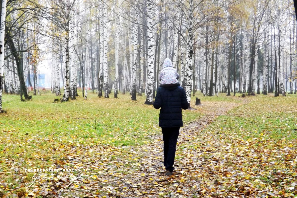 Погода в октябре. Золотая осень, глубокая осень и предзимье. Осень в Удмуртии.