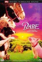 Οι Καλύτερες Παιδικές Ταινίες Μπέημπ, Το Ζωηρό Γουρουνάκι