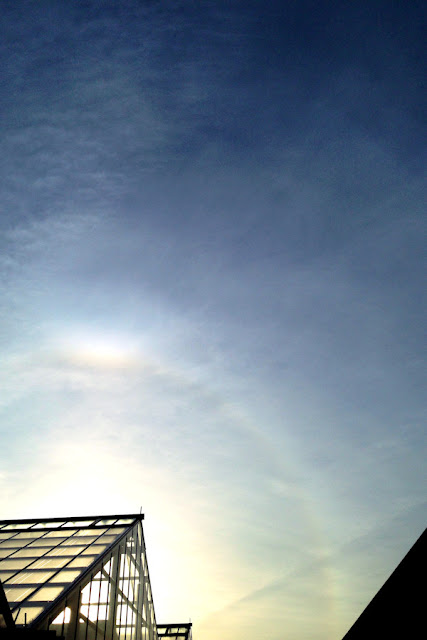 太陽の暈 Halo of the Sun