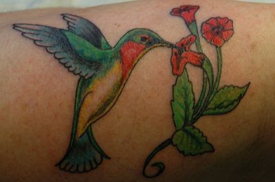 Humming Bird Tattoo Design