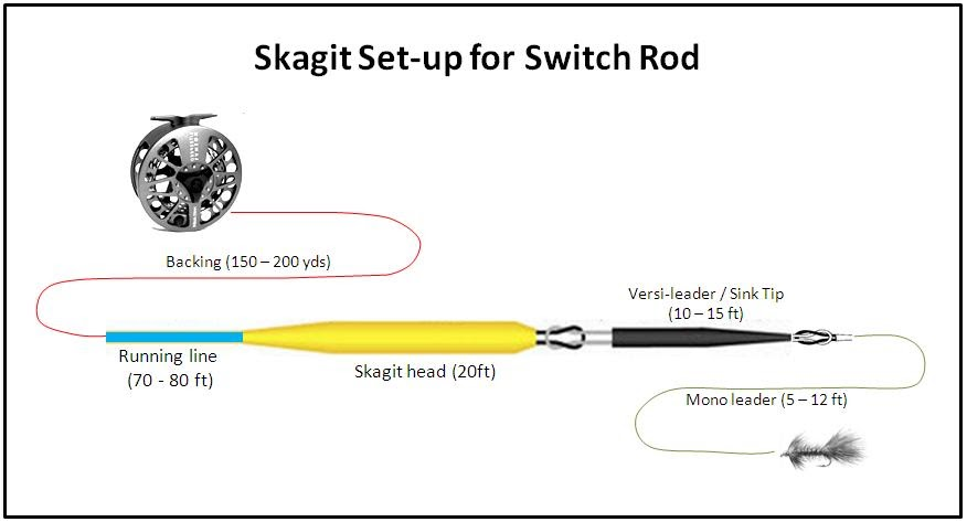 D loop spey casting skagit set up for switch rod for Trout fishing line setup