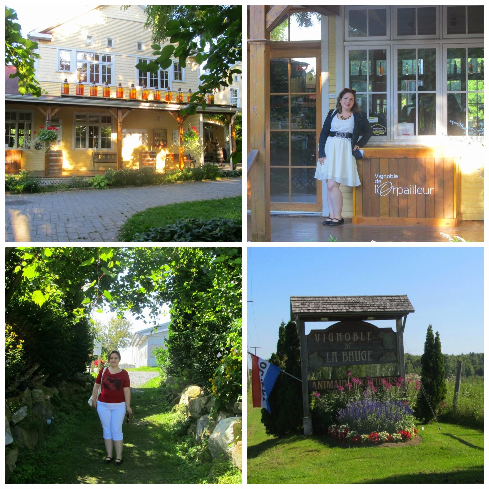 Route des vins de Dunham avec la forfaiterie et KavaTour
