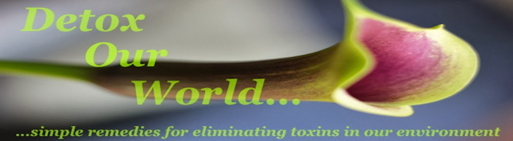 Detox Our World