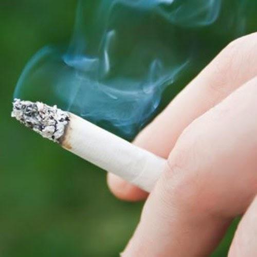 Nikotin pada Rokok - jurnalkimia.blogspot.com