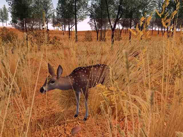 deer hunter 2005 free download full version