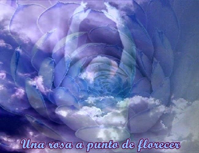 Querido, tú eres una rosa a punto de florecer, deja que aparezca la Flor de la Vida en tu interior.