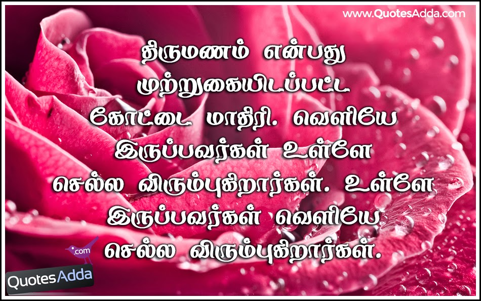Tamil Quotes In Marriage QuotesGram