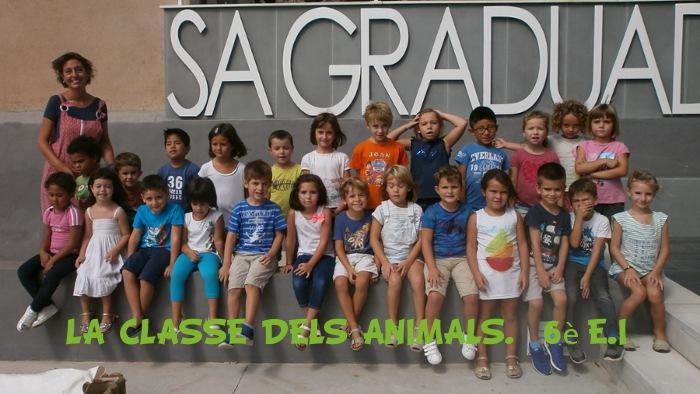 La classe de 5 anys