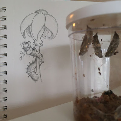 Caterpillar chrysalides hanging from the top of a clear cup with a drawing of a hungry caterpillar and a flower in the background