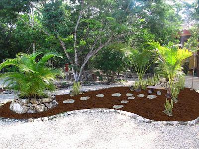 un jard n colgante en la selva naturaci n de azoteas