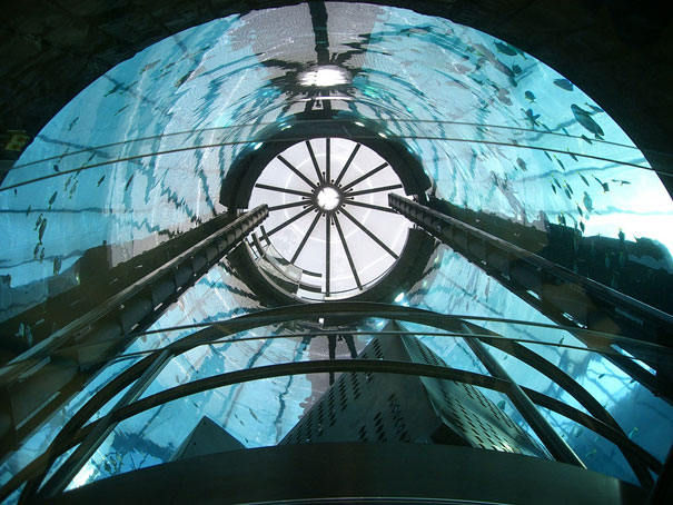 مصعد الفندق داخل حوض سمك