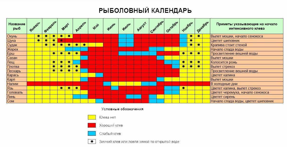 прогноз клева толстолобика в пластуновской