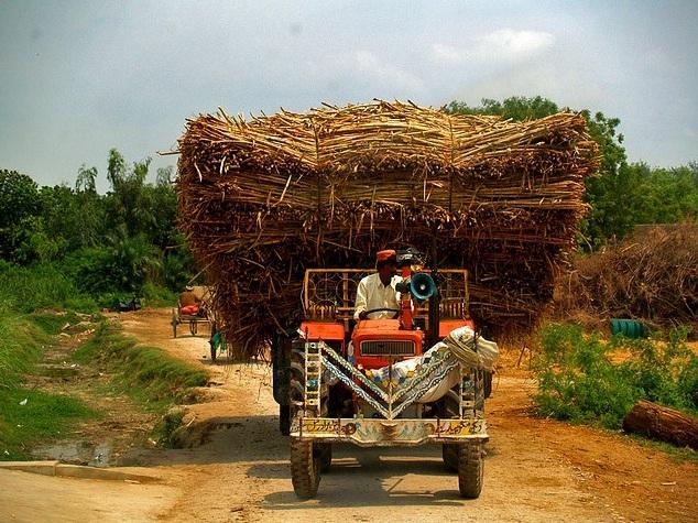Beautiful Rural Pakistan