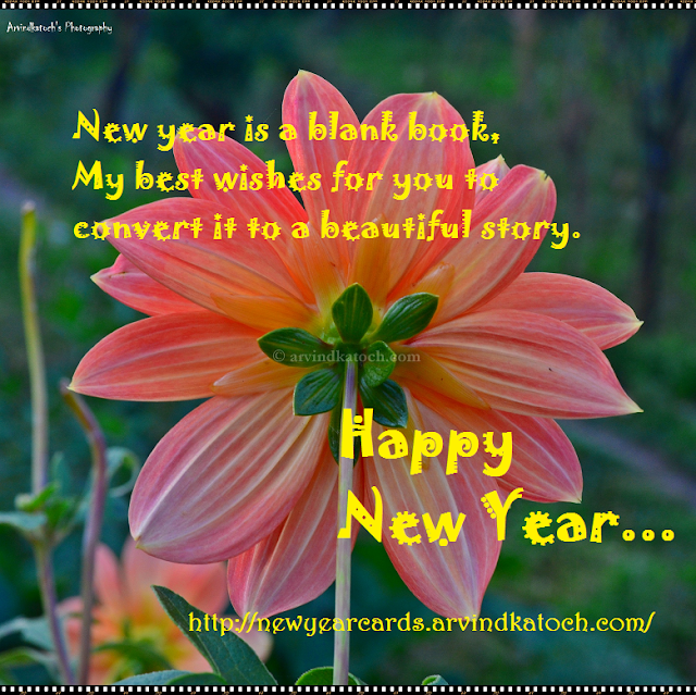 wishes, New Year, HD Card, Red Flower, New Year Card, Beautiful Story,