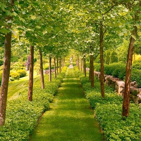 Blanchstyle Jardines Con Encanto