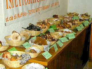 truffle festival at San Giovanni d'Asso