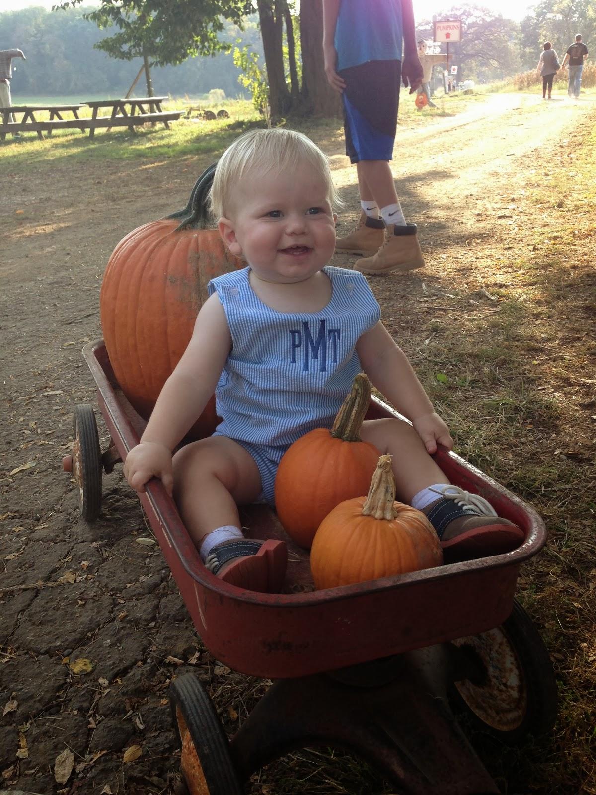 jptrans.naver.net And wagons, and pumpkins!