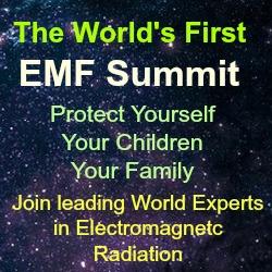 EMF Summit 2019