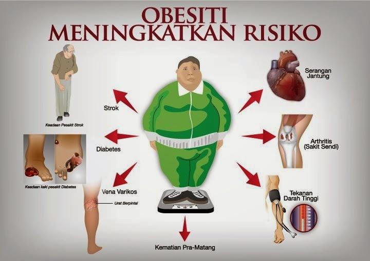 Obat Diet   Obat Pelangsing Alami Paling Cepat Dan Ampuh ...
