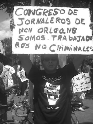 SOMOS TRABAJADORES / NOT CRIMINALS