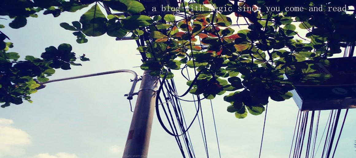 Ika Amna Blog