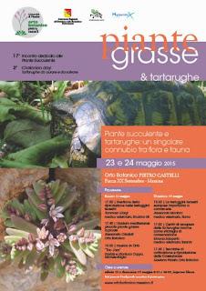 """ALL'ORTO BOTANICO DI MESSINA """"PIANTE GRASSE E TARTARUGHE"""""""