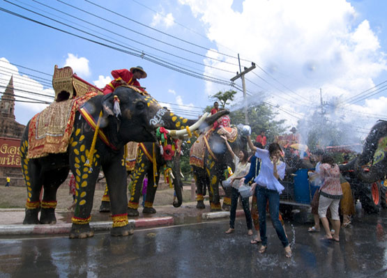 สงกรานต์กรุงเก่าเล่นน้ำกับช้าง จังหวัดอยุธยา