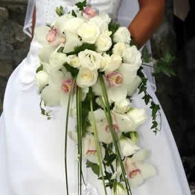 Orquideas para bodas
