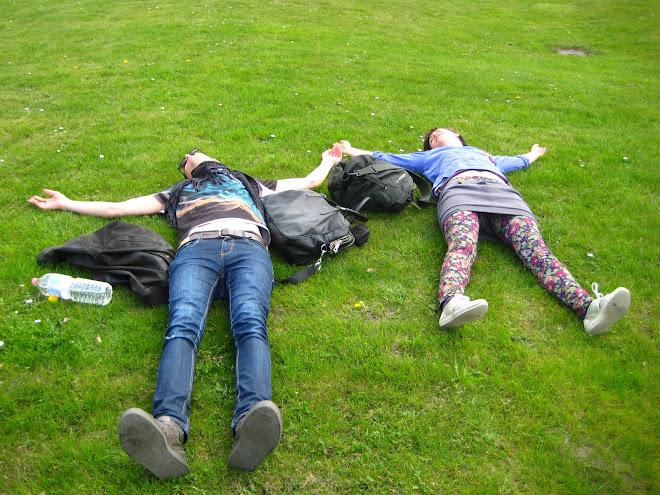 gerikitti fűben fekszik