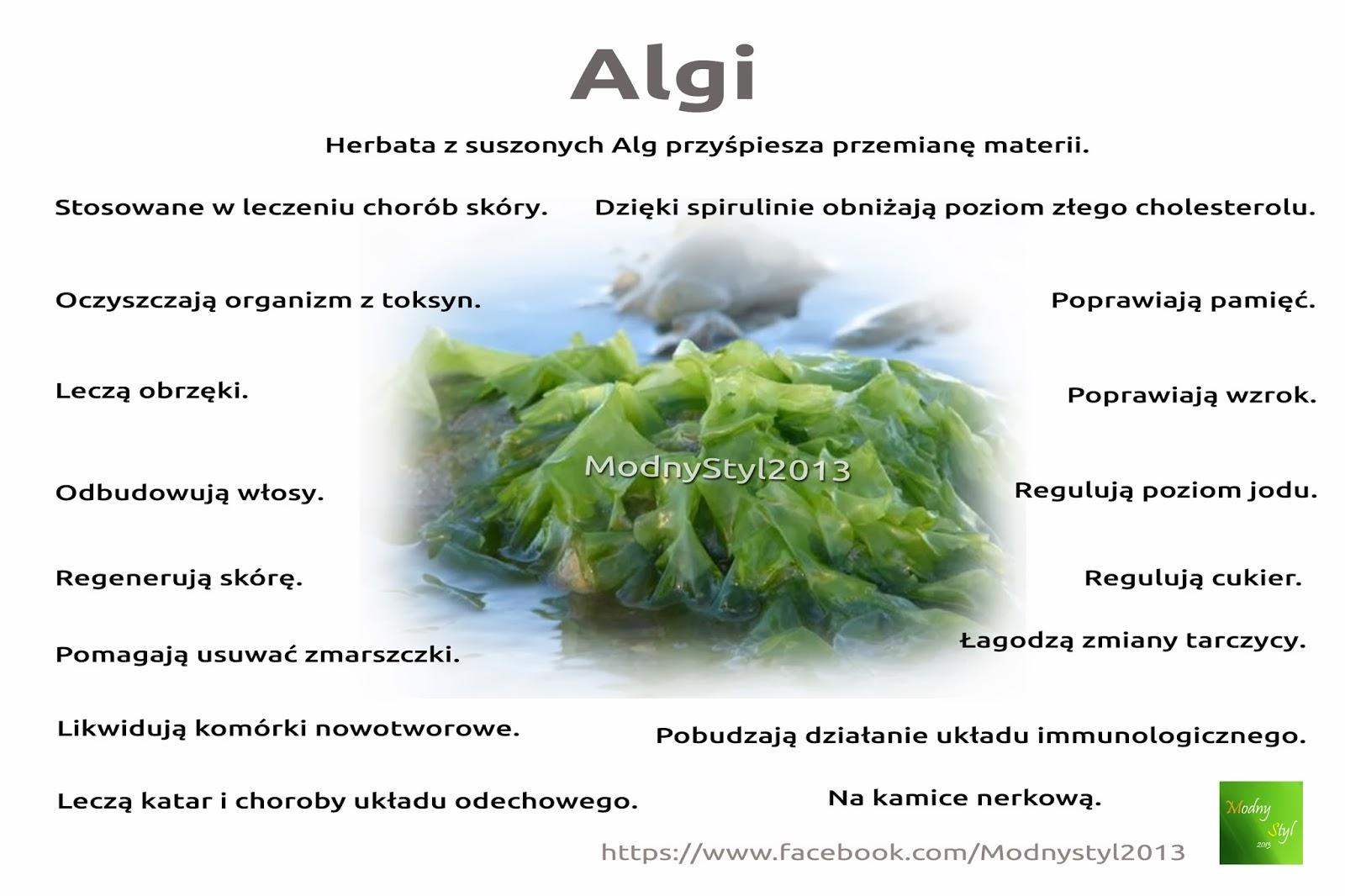Wartościowe algi morskie