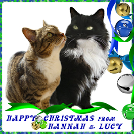 Merry Christmas Hannah and Lucy!