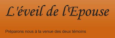 http://lettrealepouse3.blogspot.fr