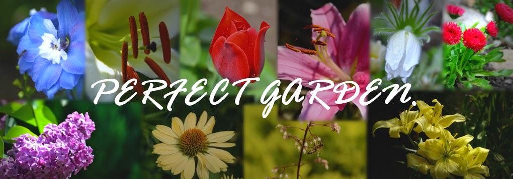 perfect garden.
