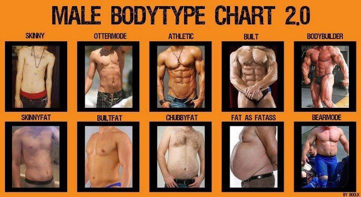 Kinds of body fat