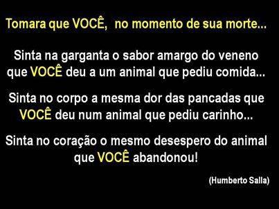 Este é um sem-abrigo em Copacabana, Brasil, que mesmo estando numa condição tão degradante (como é viver na rua) não abandonou o seu cão. Aliás, ama-o e protege-o da maneira que podemos ver na imagem. Causa Animal. Defesa dos animais. Solidariedade. Animals Lover. Lifestyle. Style Statement. Blog de moda portugal.