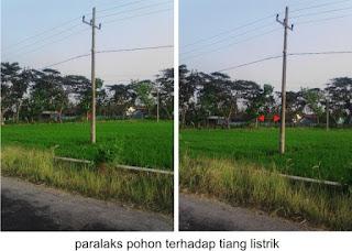 jarak pohon terhadap tiang listrik berbeda saat saat dilihat dari sudut yang berbeda