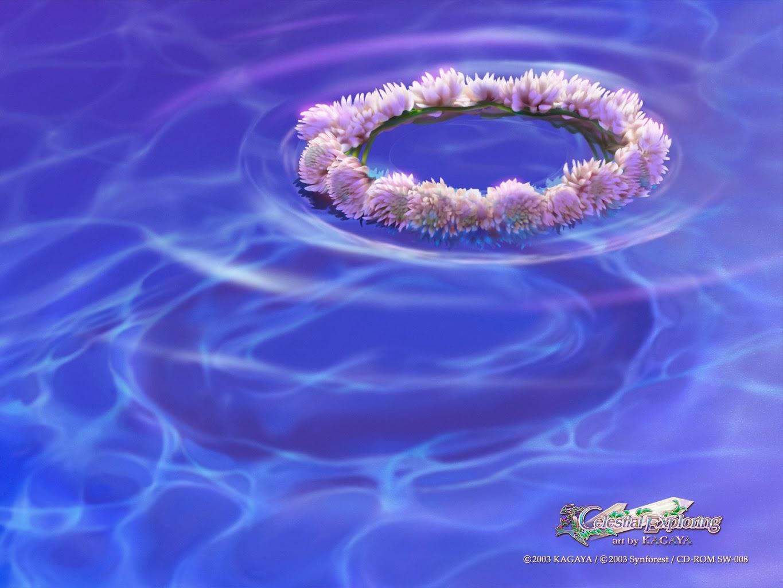 Kagaya Yutaka • Fondo de Pantalla • Flores flotando en agua
