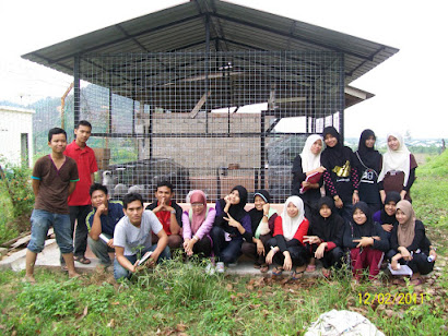 PSMZA Rabbit Team 12/02/2011